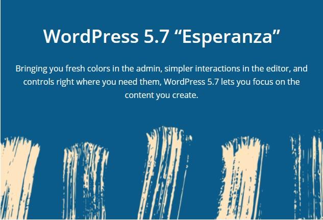 WordPress Esperanza infografika